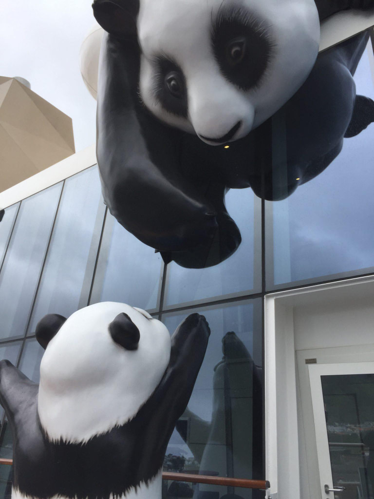 pandas on ovation of the seas