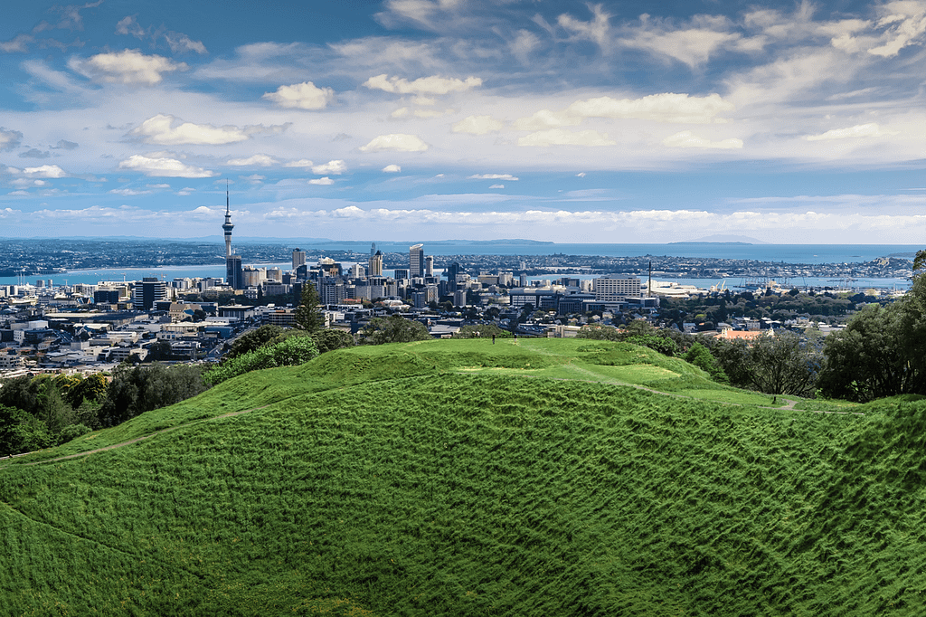 View of Auckland City and Harbour from a green hill.