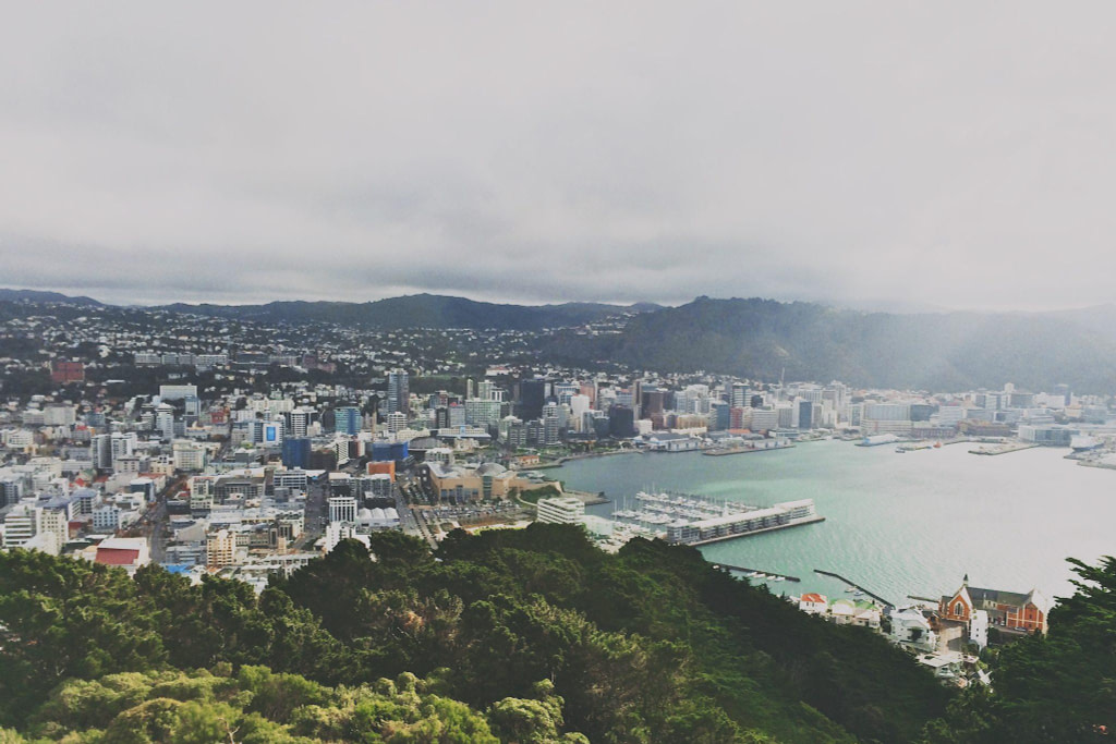 City scape of Wellington from Mount Victoria cost of living in Wellington