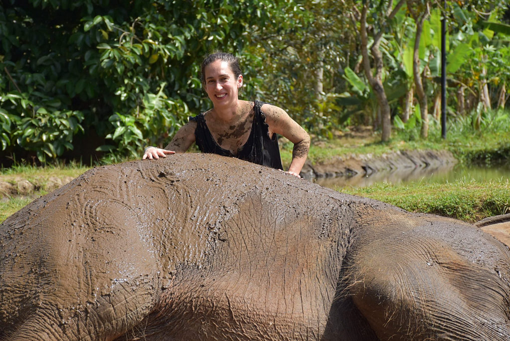 young woman leaning over an elephant which is on its side and covered in mud