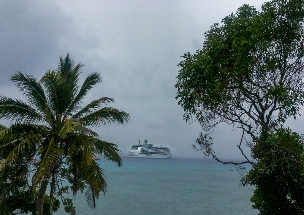 cruise ship in distance on ocean framed by two green trees on shore