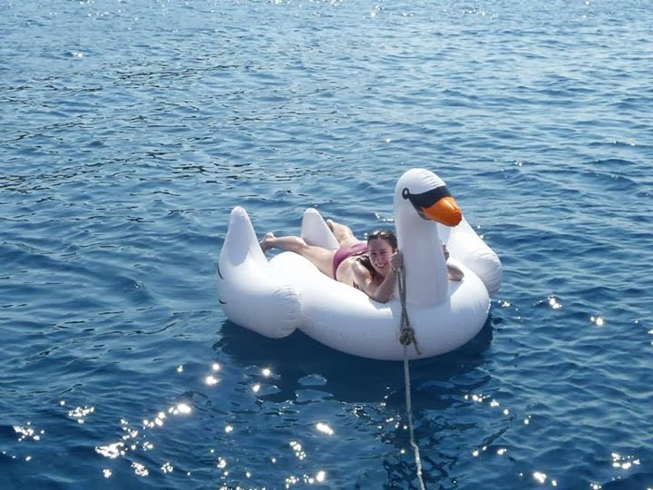 Inflatable Swan