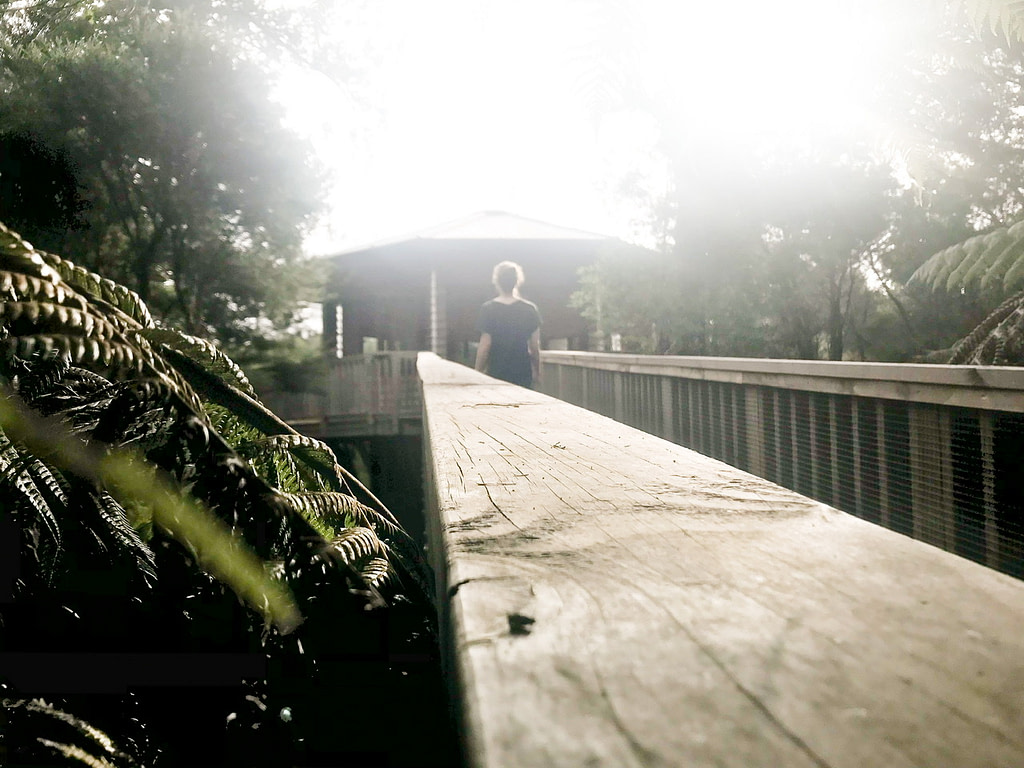 Young woman walking up wooden ramp to large treehouse among native green New Zealand trees