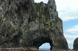 Hole in the rock Bay of Islands tour New Zealand