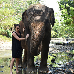 young woman in black sundress with elephant in river