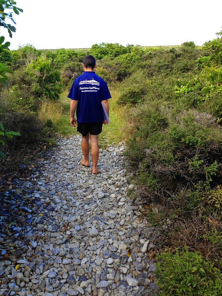 Our barefoot guide during our Kapiti Island visit