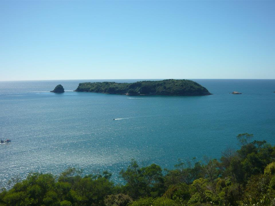 view of islands in sea from above cathedral cove coromandel penisula