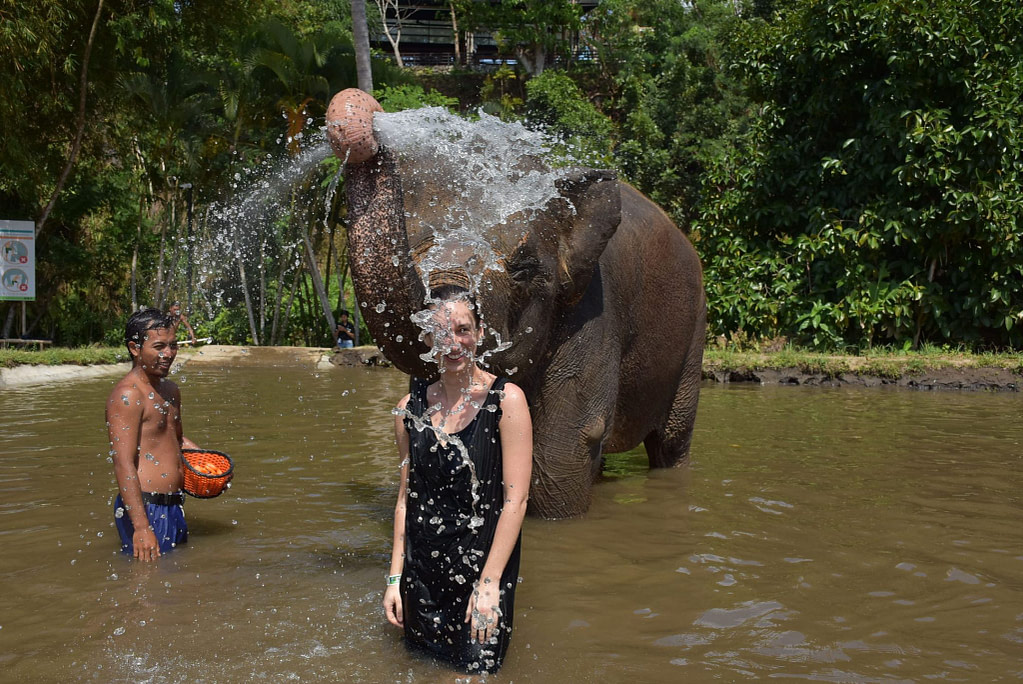 elephant in water with handler spouts water from trunk over young woman standing in front in black dress