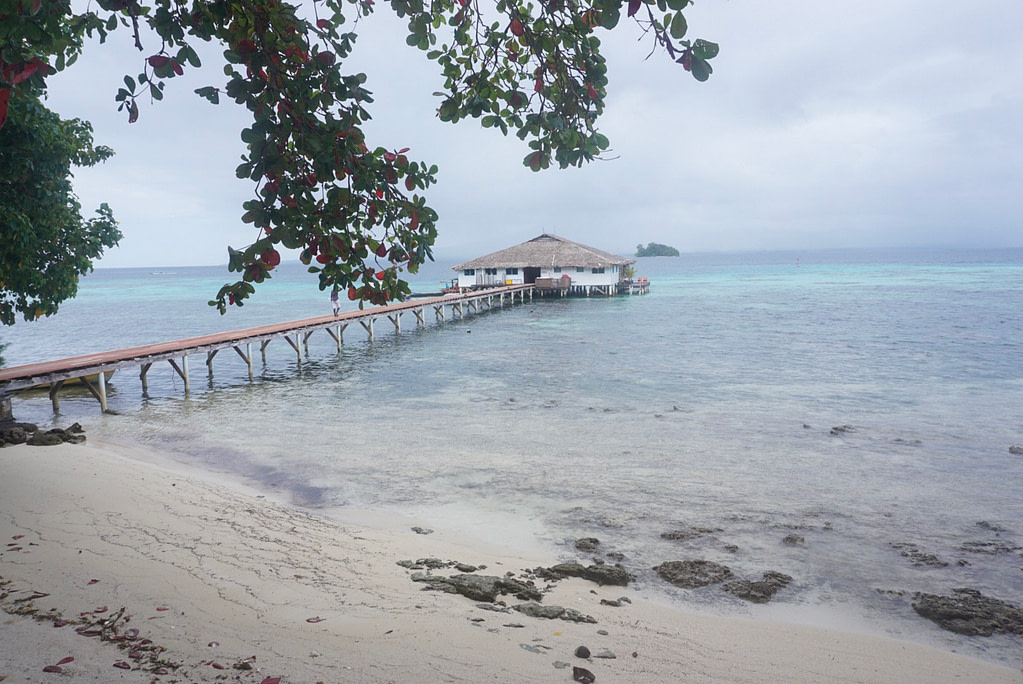 white restaurant with brown thatched roof and boat at end of long pier into blue sea
