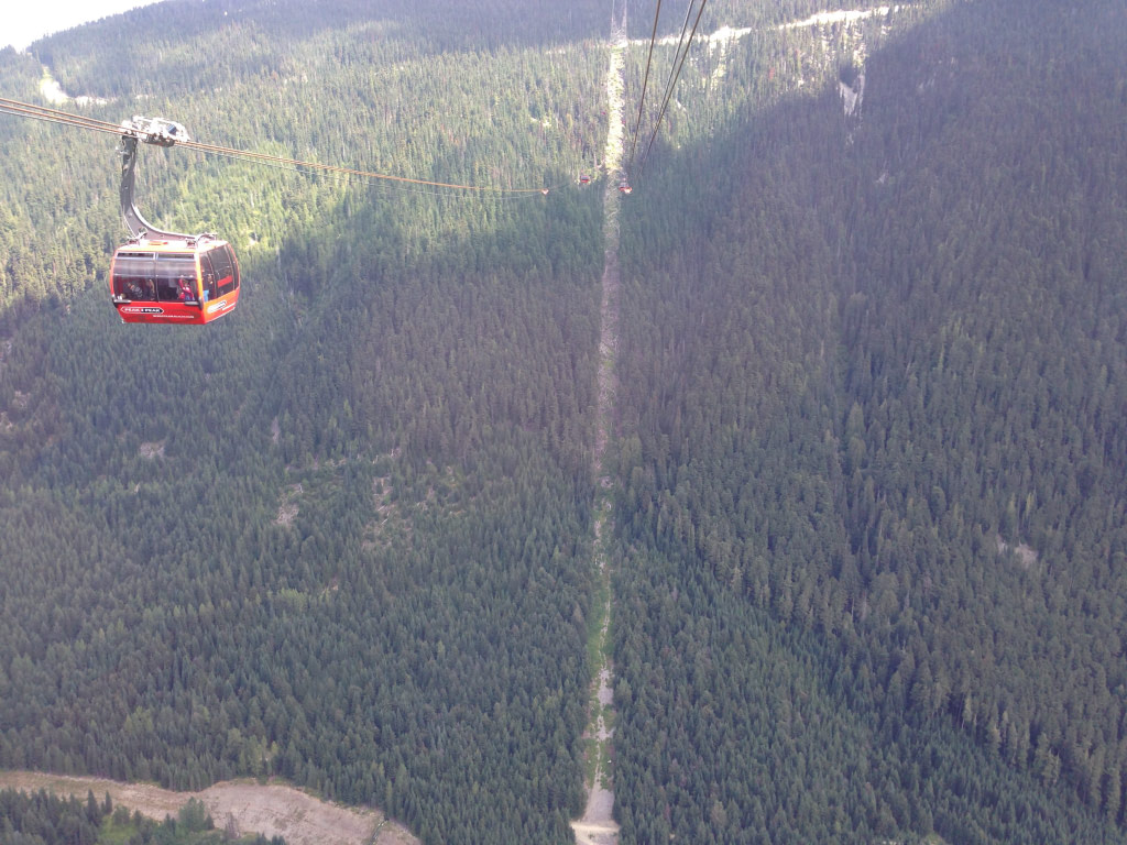 Red Peak2Peak Gondola on cable over mountains covered in trees