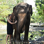 Bali Zoo Review: experiences with elephants and orangutans