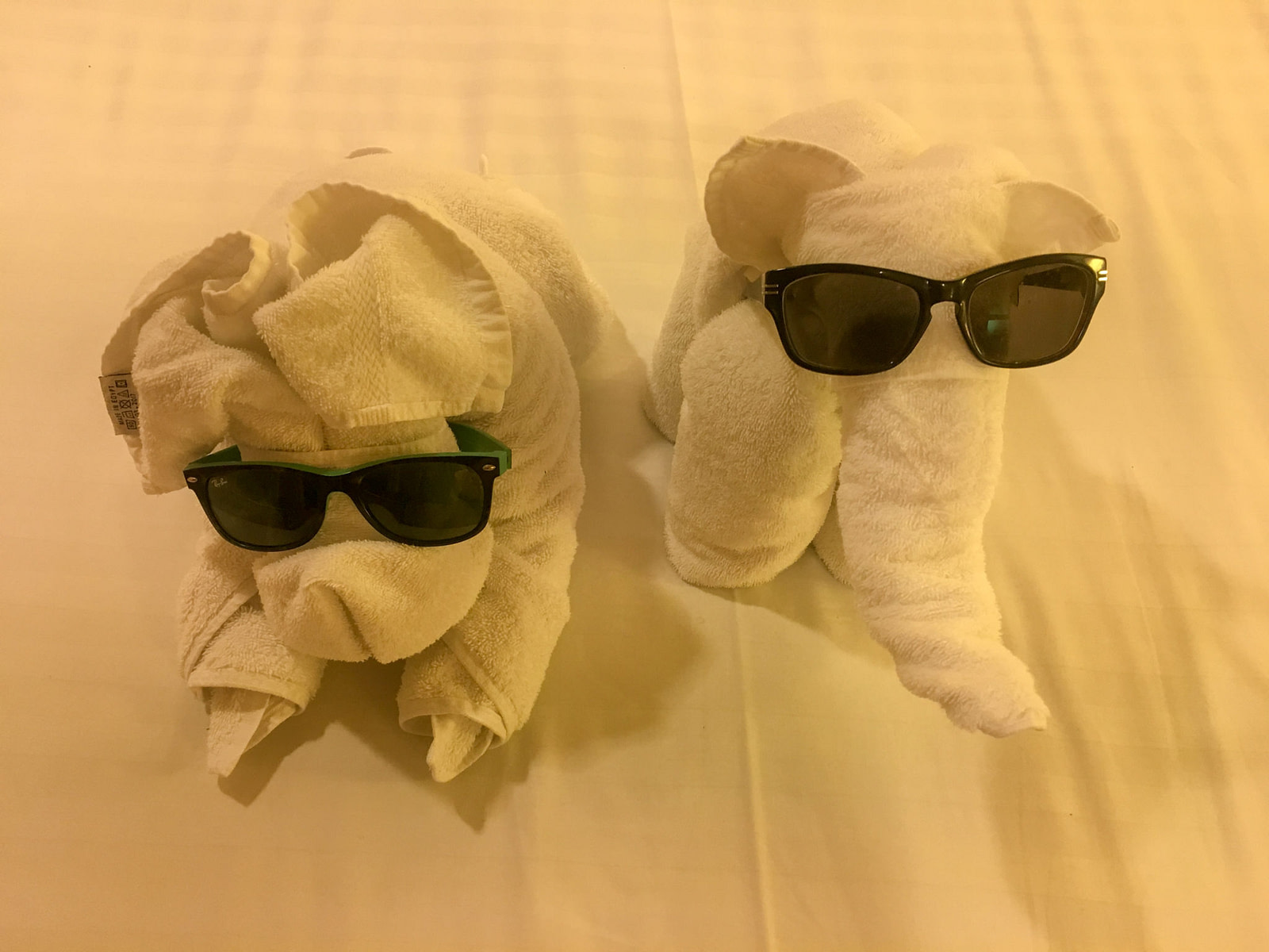 two animals made out of towels wearing sunglasses