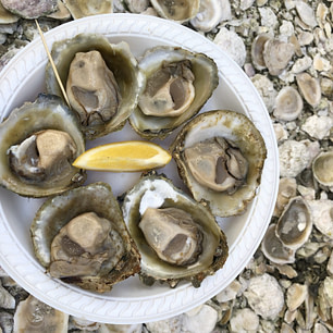 Plate of 6 raw oysters with lemon wedge