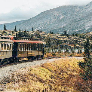 White Pass Summit train in Alaska cruise excursion