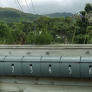 letterboxes on fence with native New Zealand bush in background